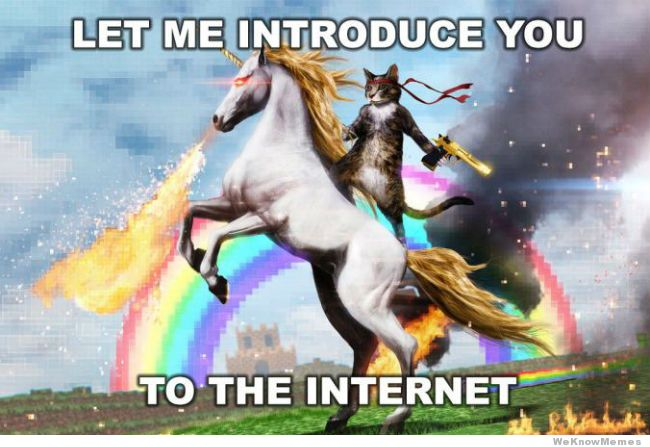 Let-Me-Introduce-You-To-The-Internet-Meme-01